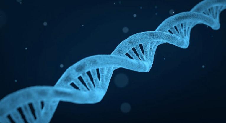 Alzheimer disease genetics