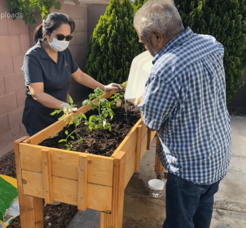Gardening is a  great form of senior exercise