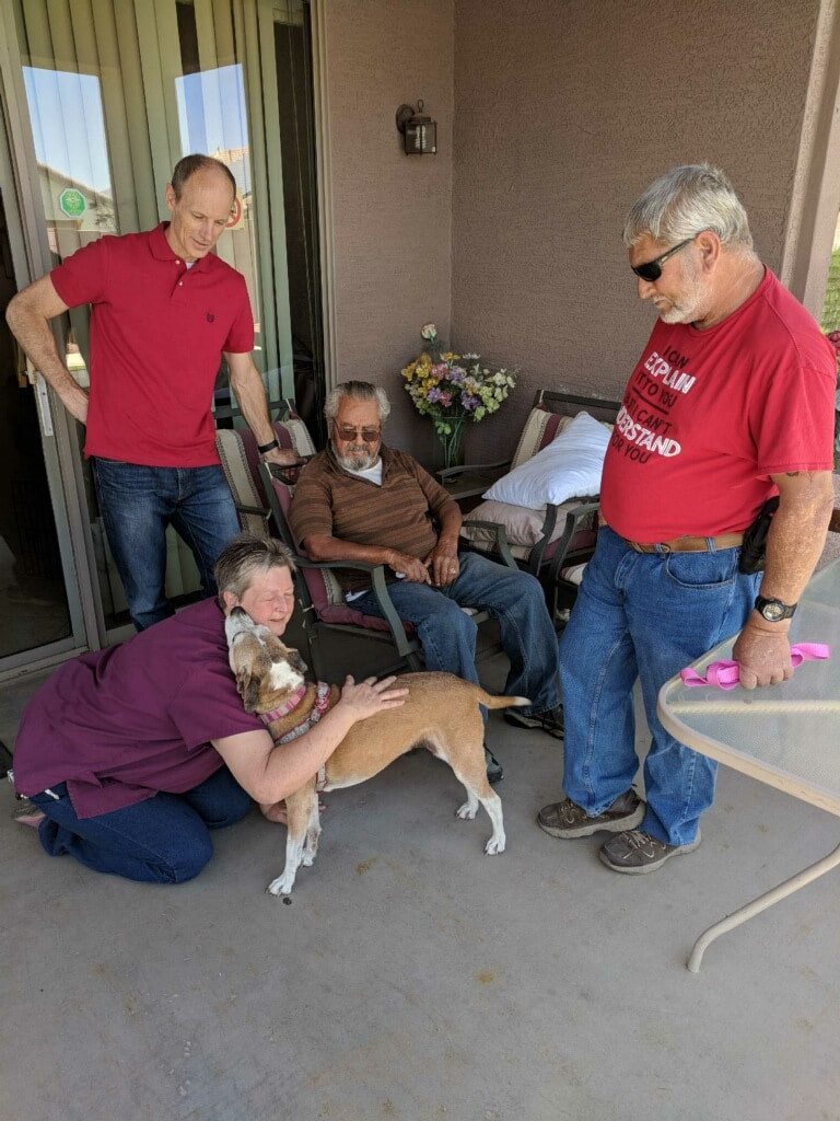 Pets for the Elderly combat Lonliness
