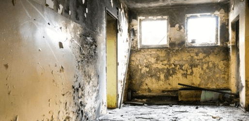 Remove mold to slow down Alzheimer's