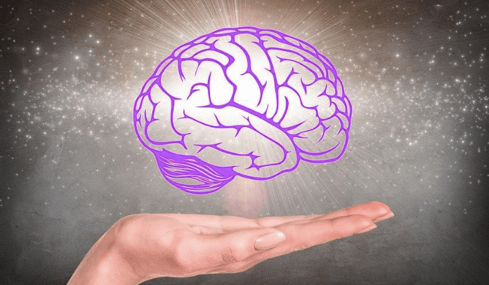 Brain games for adults with hands