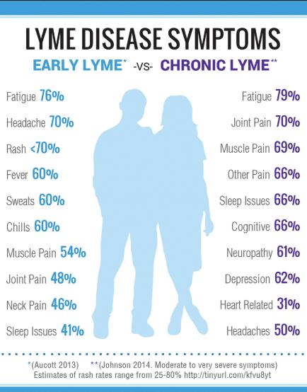 Common Lymes disease symptoms