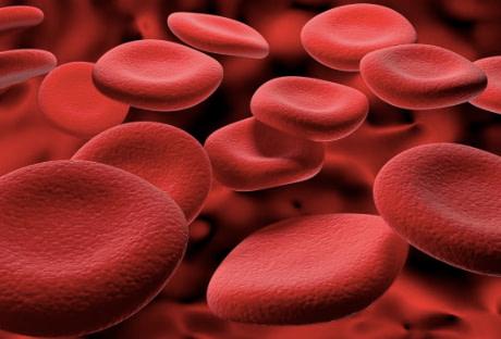 Vitamin B12 benefits include hemoglobin production