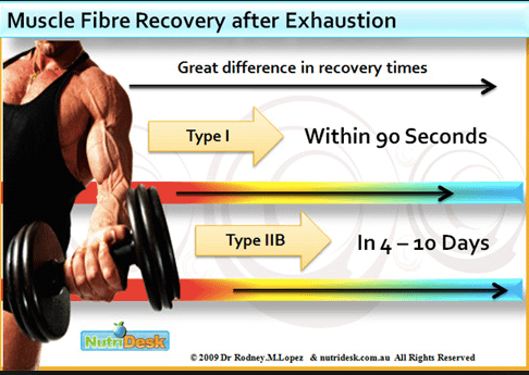 Super Slow training requires a long rest for muscle fibers to recover